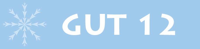 GUT 12